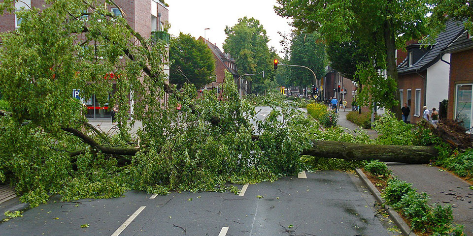 Image of storm damage